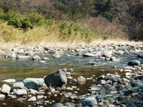 08/03/08 道志川