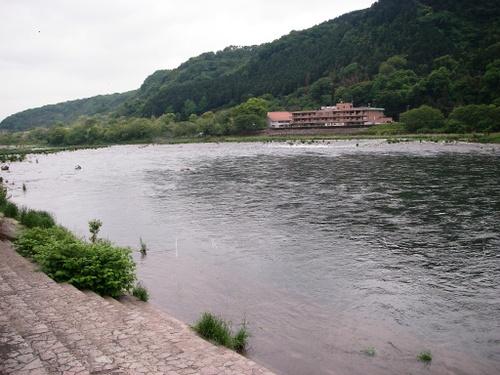 相模川大島